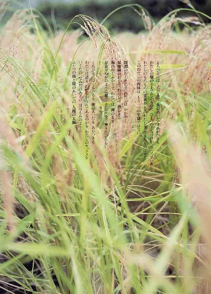 吉本多香美 画像075